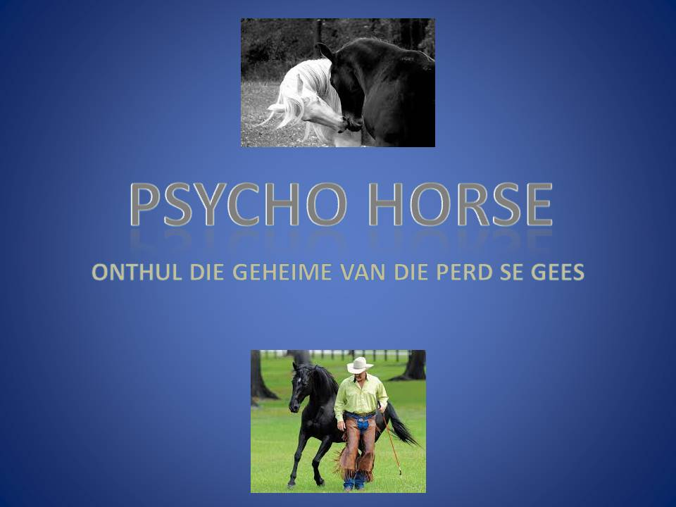 PSYCHO HORSE BUITEBLAD